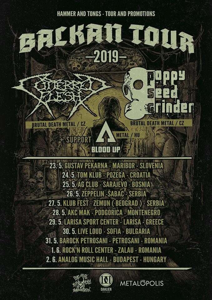 Balkan Tour 2019