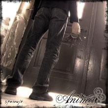 animacover220