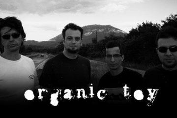 Organic Toy